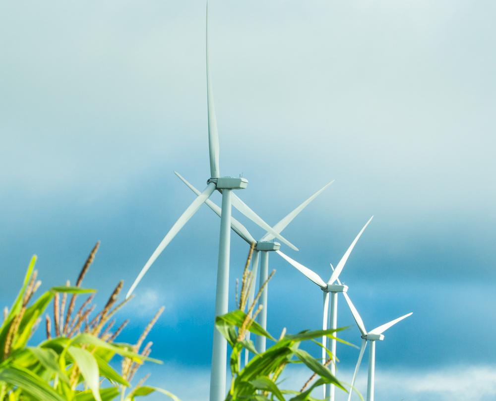 Ventos de Sao Clemente Wind Complex