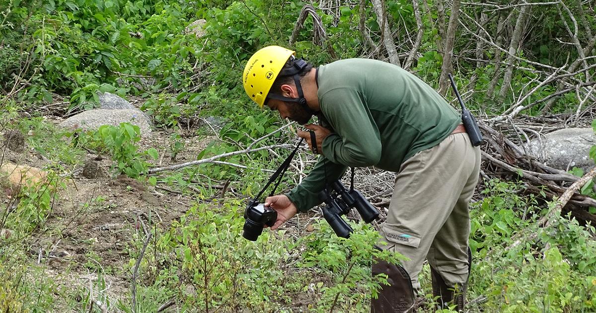 Echoenergia promove monitoramento e preservação da biodiversidade cearense