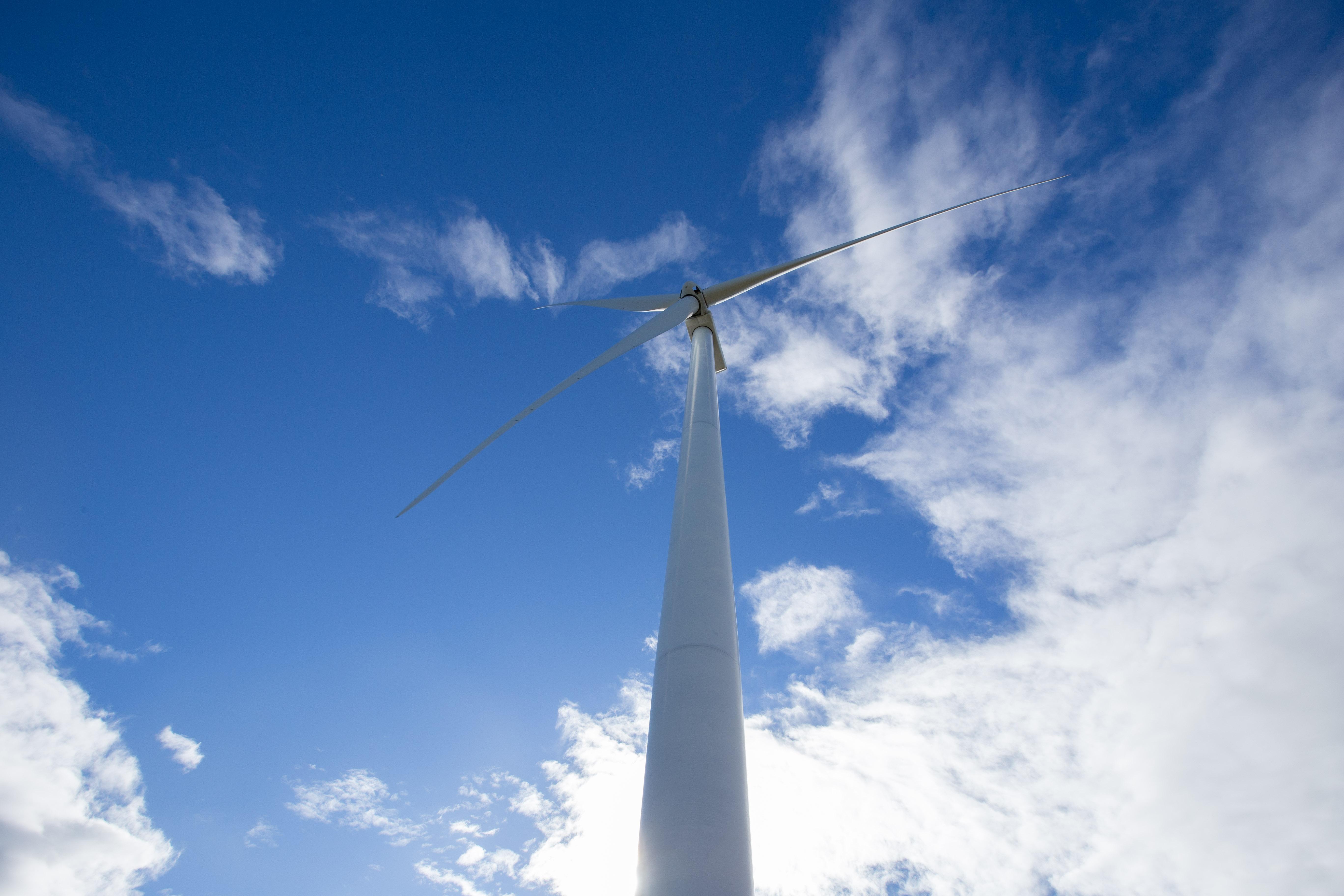 (Português do Brasil) Novo slogan da Echoenergia reflete o pioneirismo da companhia no setor de energia eólica